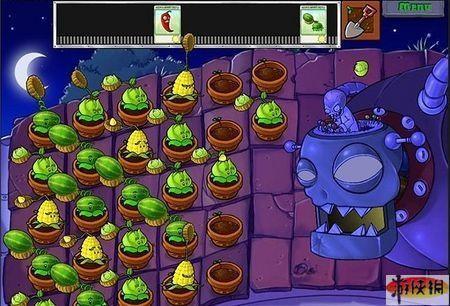 第五关:屋顶; 植物大战僵尸;