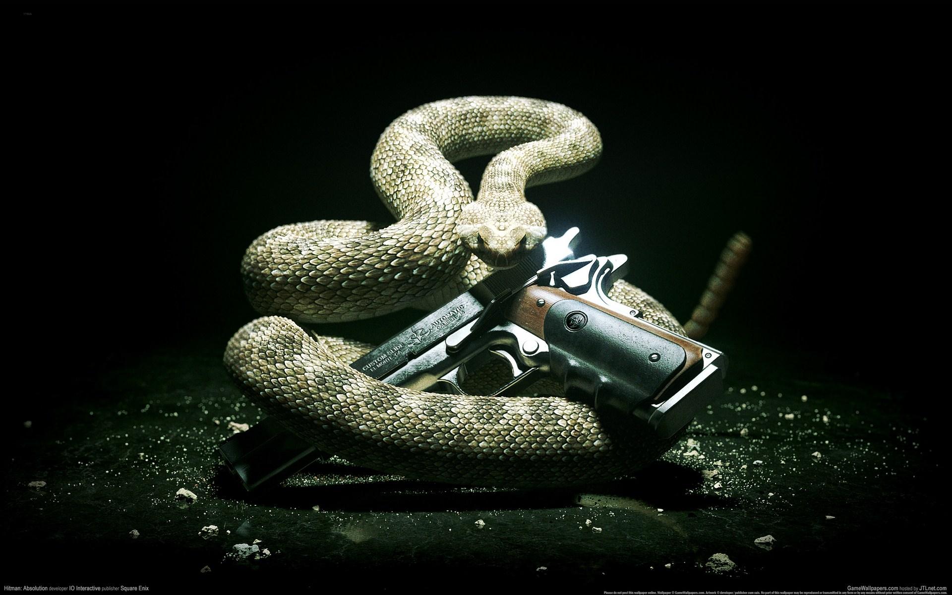 《杀手5:赦免》高清壁纸