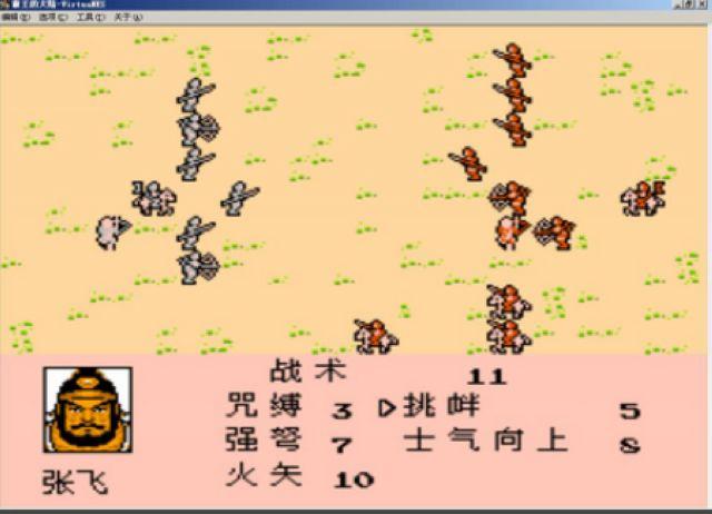 霸王大陆新野地图