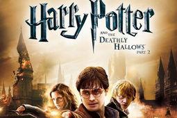 哈利波特7:死亡圣器下图片