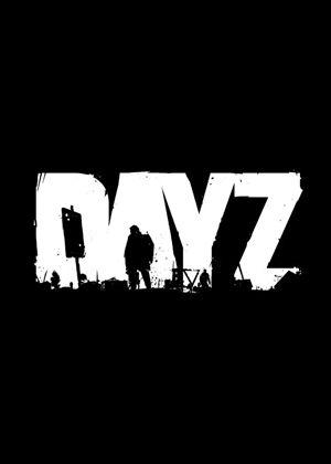 DayZdayz独立版dayz下载
