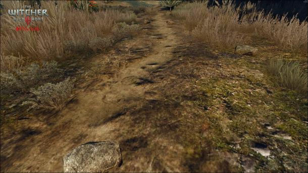 进步相当大 粉丝自制《巫师3》HD项目新版截图对比