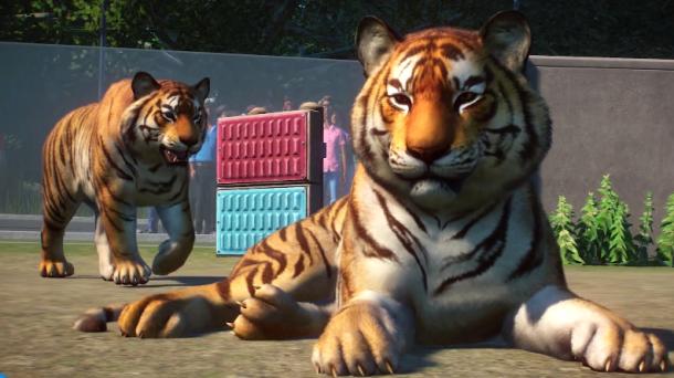 GC 2019:《动物园之星》实机演示 随心所欲打造动物理想乡