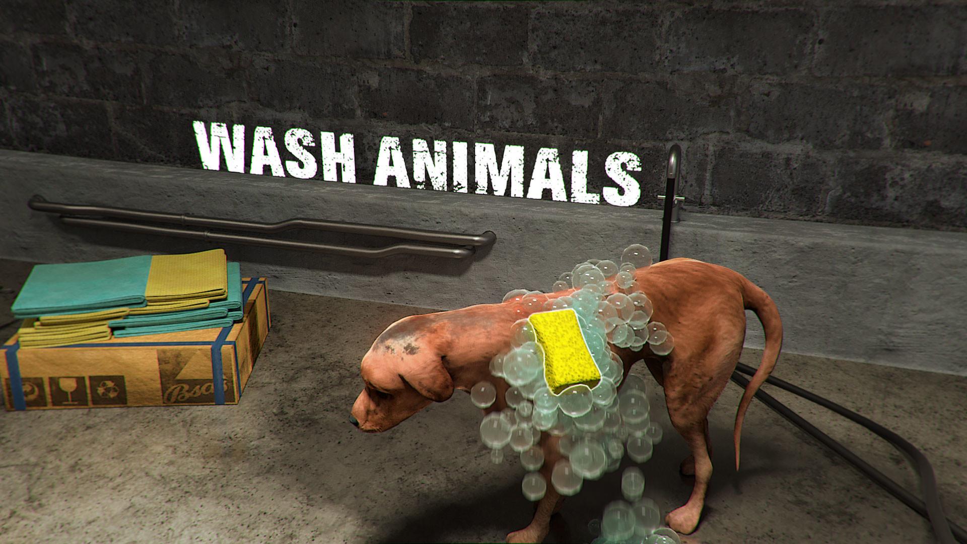 动物庇护所图片
