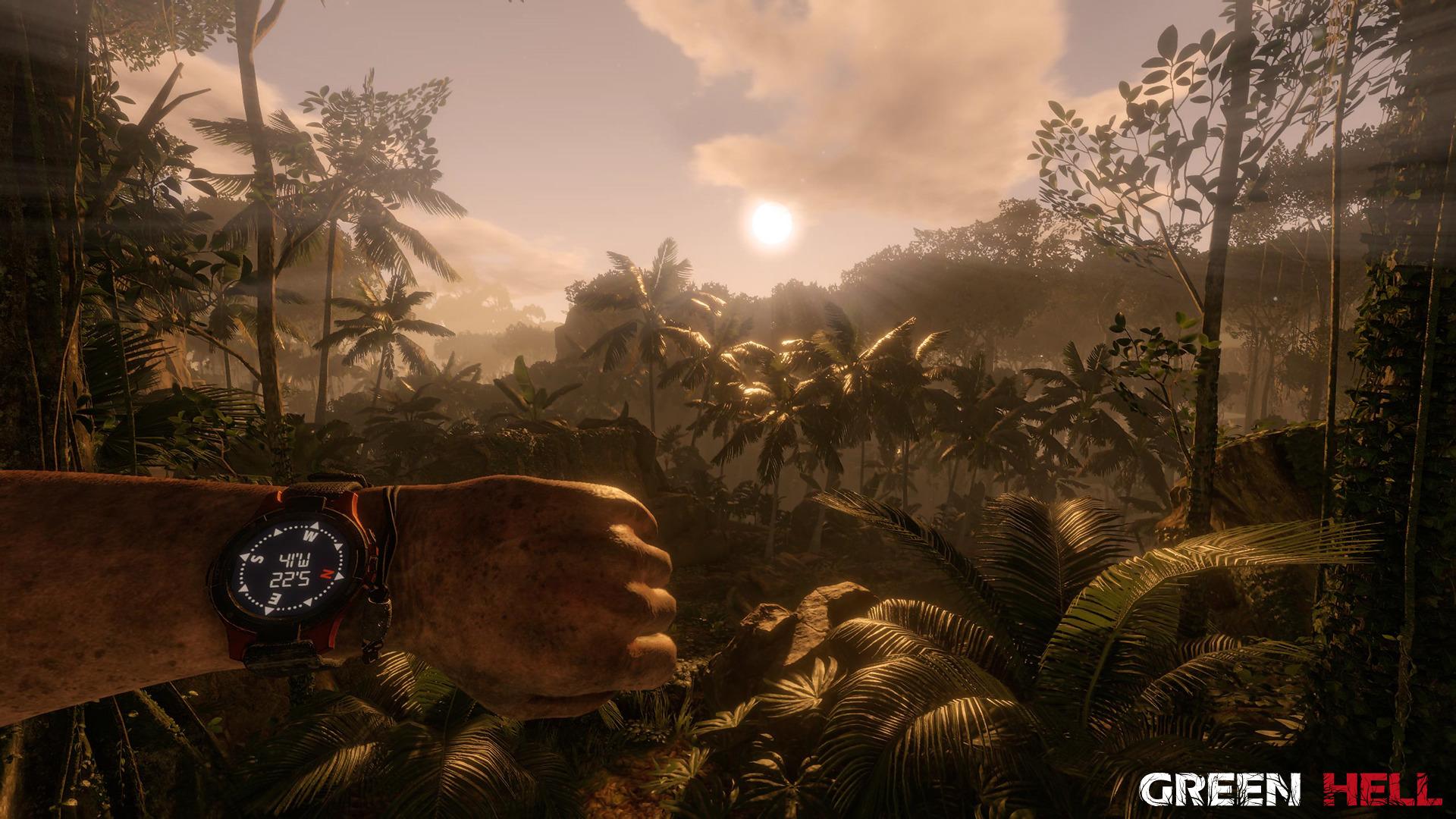 丛林地狱丛林地狱中文版下载攻略秘籍
