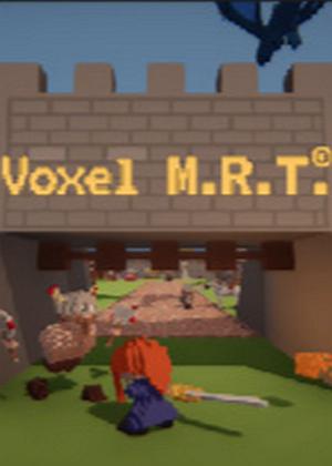 Voxel M.R.T.图片