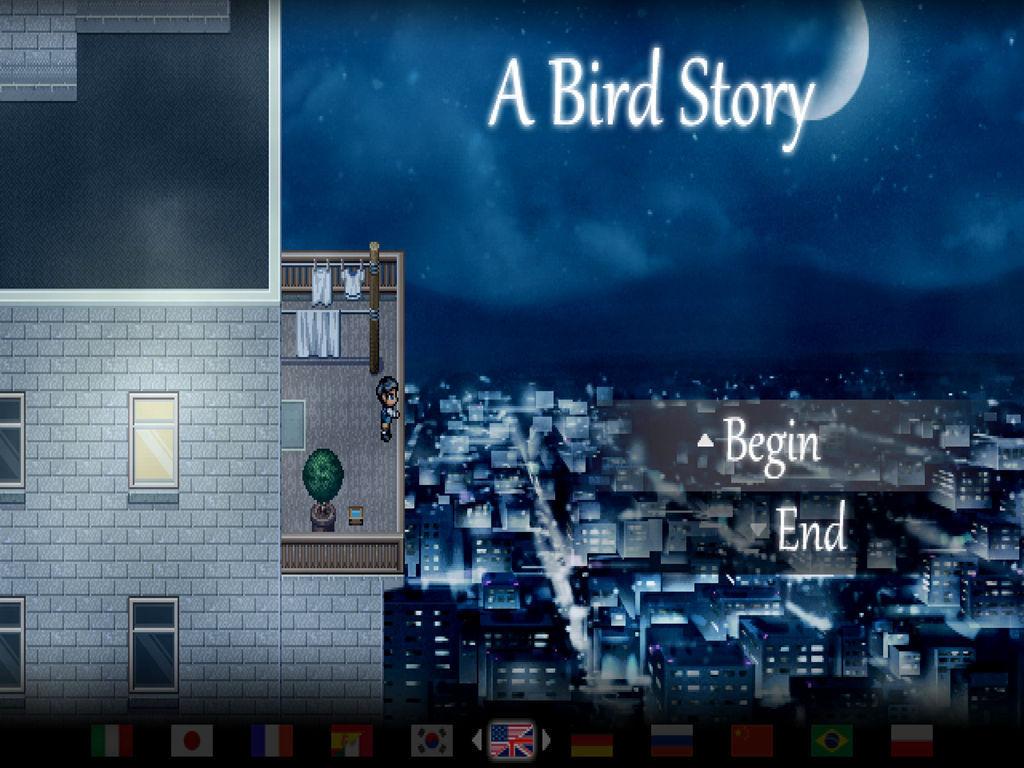 鸟的故事图片