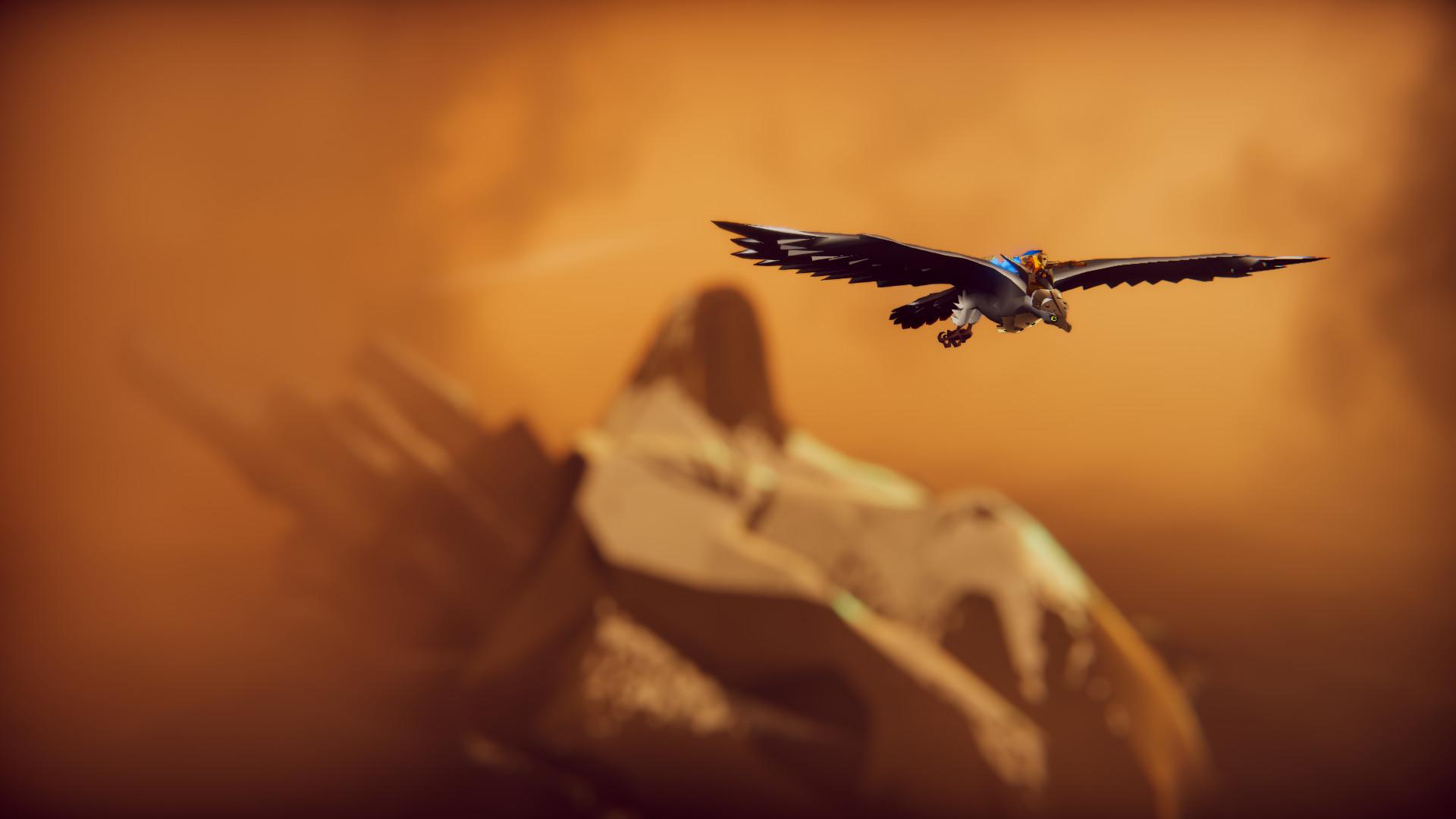 空戰獵鷹圖片
